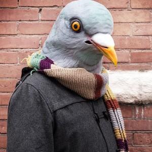 Masque Pigeon