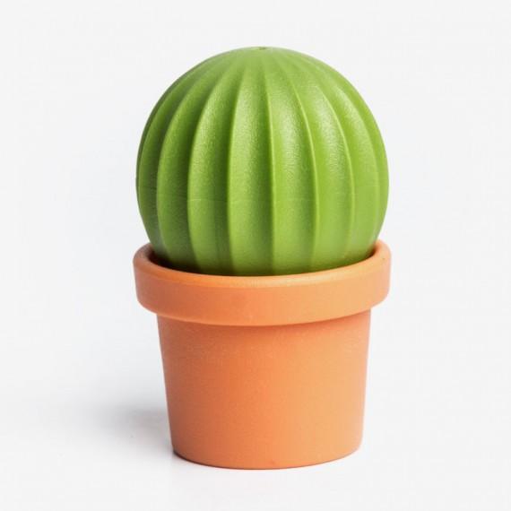 Salière / poivrier cactus