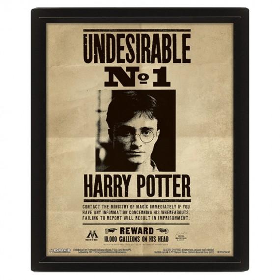 Cadre mural avis de recherche Harry Potter