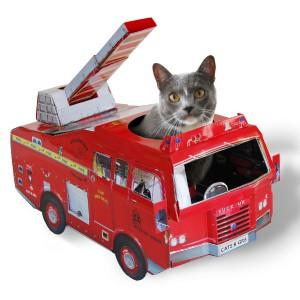 Camion pompier pour Chat