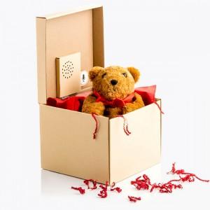 Boîte cadeau - message à enregister