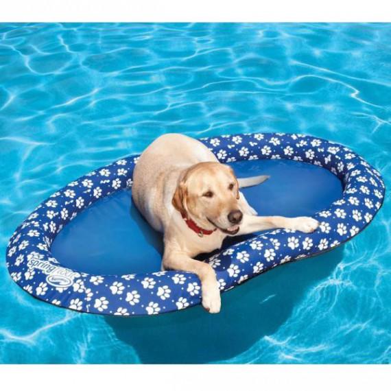 Panier pour chien flottant